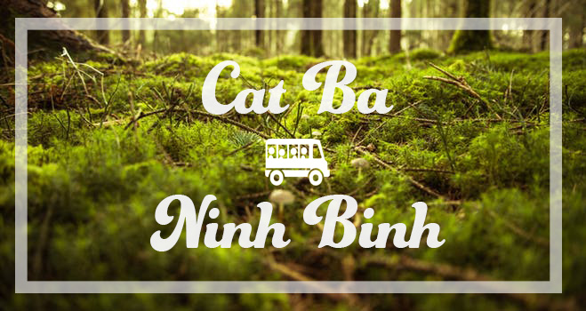 HOW TO GET TO NINH BINH FROM CAT BA