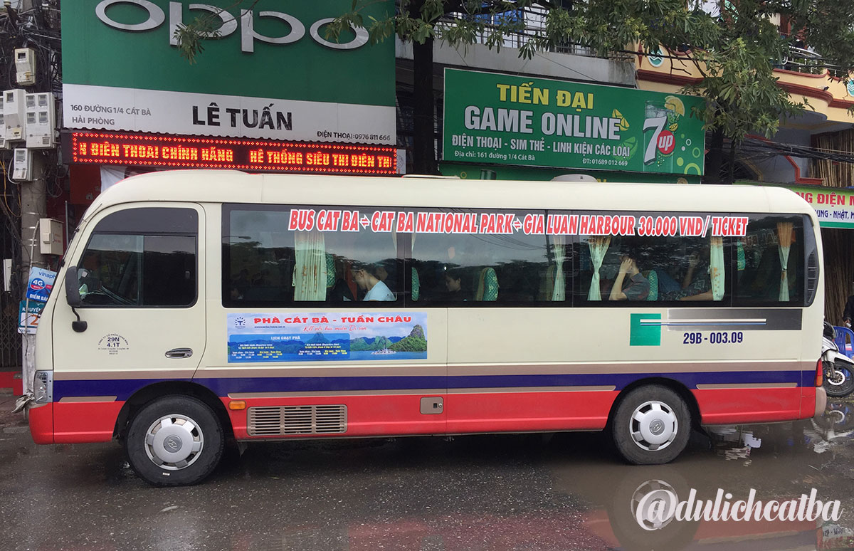 Xe bus Cát Bà đi Rừng Quốc Gia bến Gia Luận