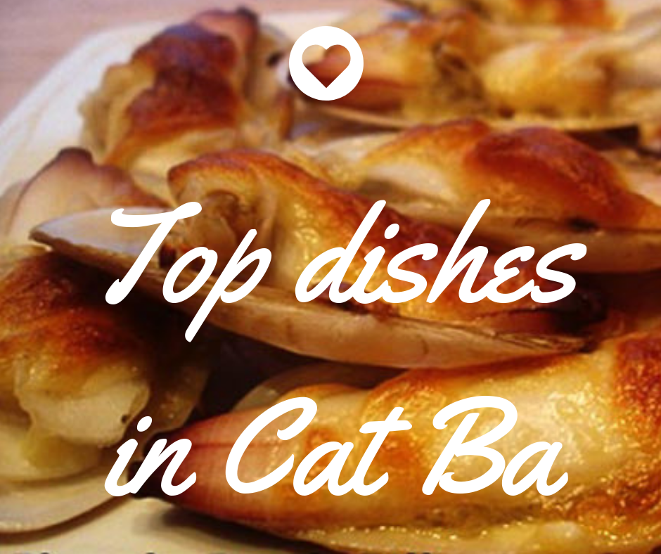 Top special foods you should not miss when coming to Cat Ba island.