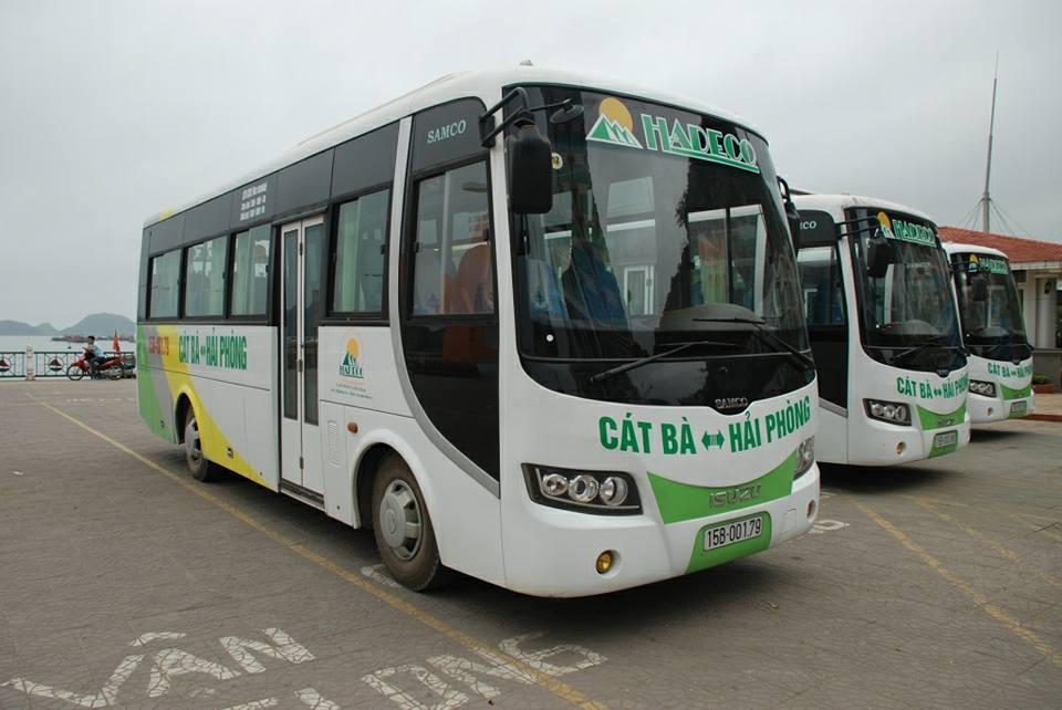 Xe Bus Hải Phòng - Cát Bà