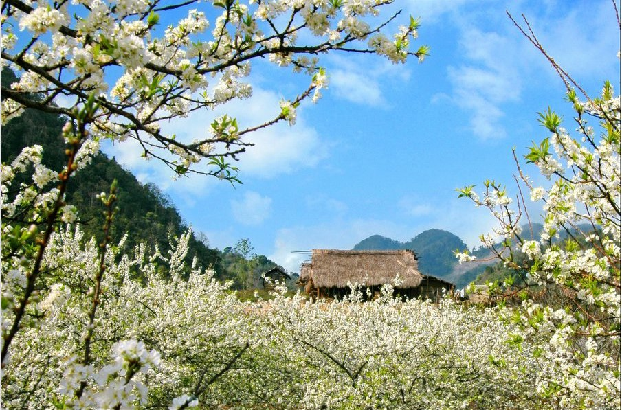 How to get to Moc Chau