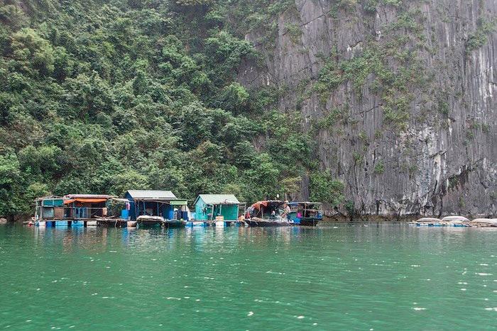 Làng Chài Việt Hải - Chốn Chân Quê Giữa Đảo Cát Bà