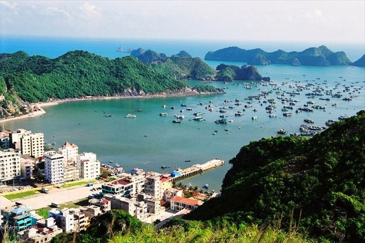 The overview of Cat Ba Town