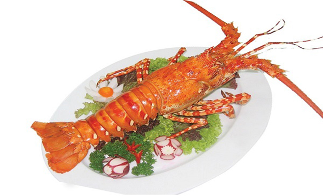 Cat Ba lobster