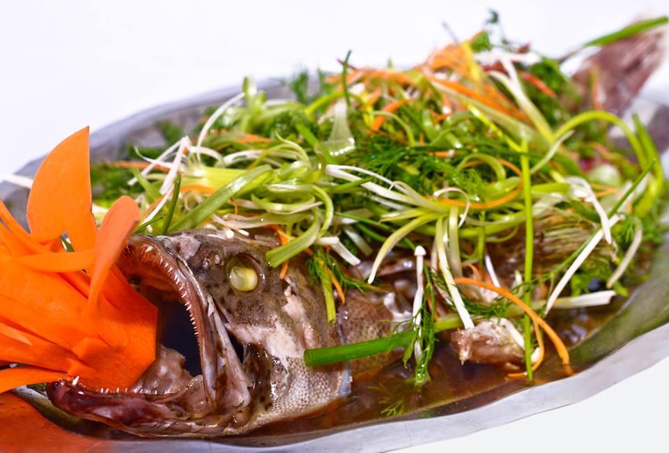 Cat Ba Song Fish