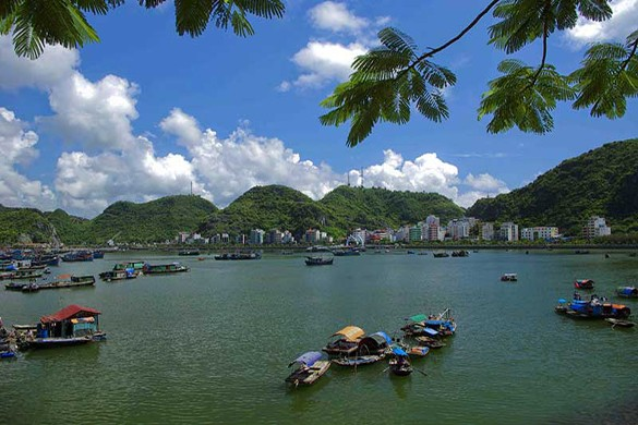 Cat Ba Tour 2 days 1 night (overnight at hotel)