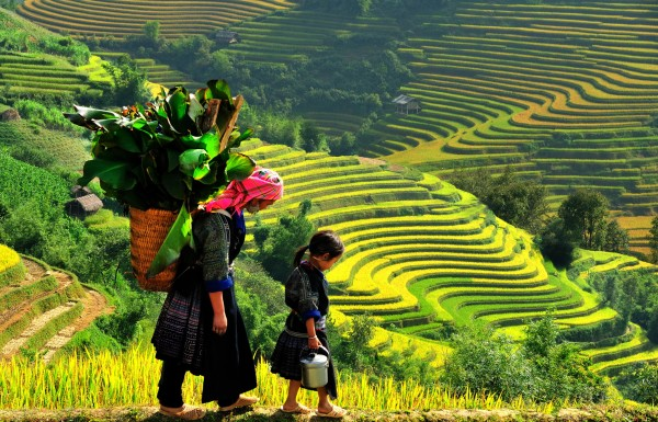 Easy trekking Lao Chai - Ta Van village with homestay